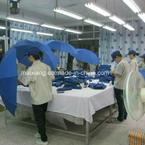 Full Inspection Service, 100% Final Inspection, Full Product Inspection pictures & photos