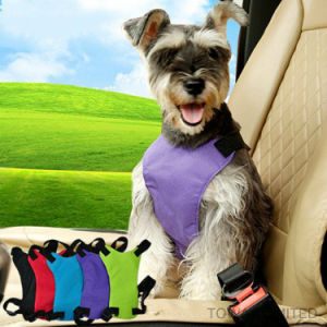 Design Dog Lead Car Seat safety Mesh Pet Harness Belt pictures & photos