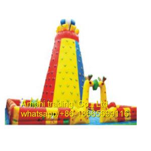 Rock Climbing Wall for Sale, Climbing Pillars Inflatable Rock Climbing pictures & photos
