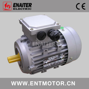 Ms Electric Three Phase AC Motor pictures & photos