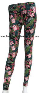 Fashionable and New Design Pant for Women for Exercise pictures & photos