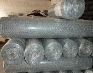 Pig Wire Mesh/Poultry Wire 1/2 Hex Mesh Chicken Wire pictures & photos