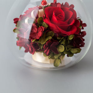 Promotion Fresh Flower for Christmas Gift pictures & photos
