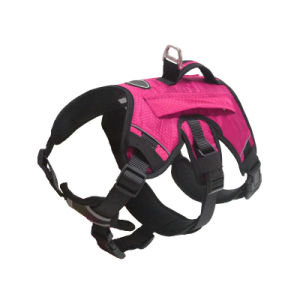 Pet Harness with Backpack (YD637) pictures & photos