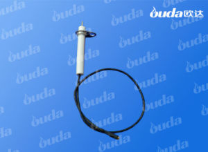 Ceramic Electronic Igniter for Gas Burner pictures & photos