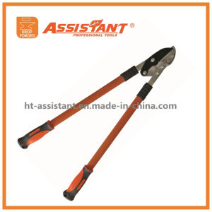 Heavy Duty Horticultural Tree Branches Compound Anvil Loppers pictures & photos