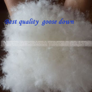 Hot Sale 70%/80%/90% Washed White Goose Duck Down for Filling pictures & photos