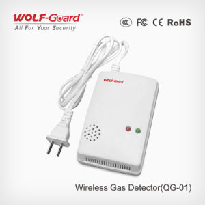 Wireless Gas Detector Professional Gas Alarm Carbon Monoxide Alarm Qg-01 pictures & photos