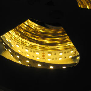 Warm White 120LEDs SMD5050 LED Strip for Indoor pictures & photos