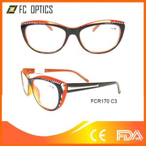 Fashion Plastic Magnifying Reading Glasses pictures & photos