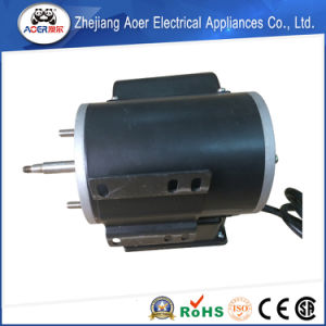 Torque Pumps AC Electric Motors pictures & photos