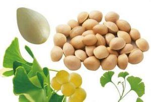 (Ginkgo Biloba Extract) ---Whitening and Anti-Wrinkle Ginkgo Biloba Extract pictures & photos