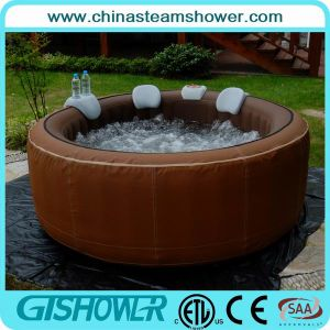 Folding Freestanding Swimming Pool (pH050010 Brown) pictures & photos