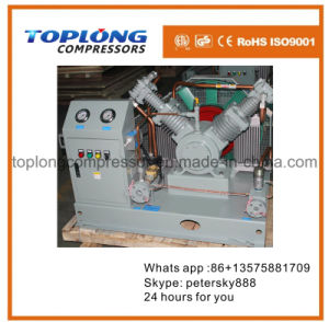 Good Quality Rix Class Methane Carbon Dioxide Ammonia Freon Compressor pictures & photos