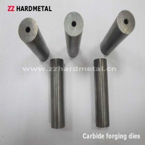 G1 G2 G3 G4 G5 G6 Cemented Carbide Punching Dies. pictures & photos