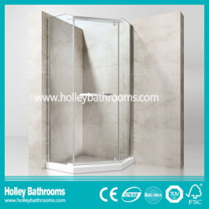 Pivot Door Stainless Steel Hardware Aluminum Waterproof Bar Shower Door-Se610c