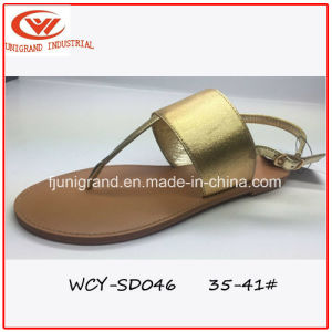 Women Leisure Slipper Simple Design Lady Sandals Shoes pictures & photos