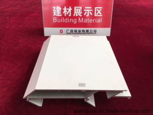 High Quality 6063 Powder Coated or Anodized Aluminium Profile for Curtain Wall pictures & photos
