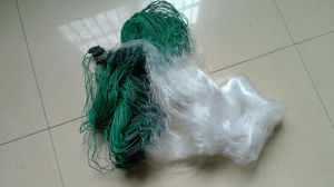 Wholesale Completed Fishing Nets pictures & photos