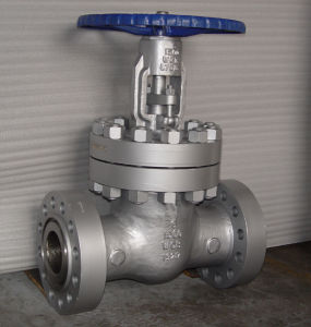 API600 Cast Steel Flanged Gate Valve pictures & photos