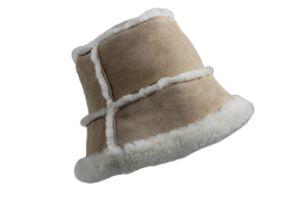 Winter Warm Fashion Ski Cap (KS-2121) pictures & photos