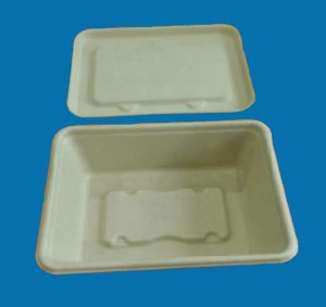 Disposable Bamboo Pulp Food Container pictures & photos