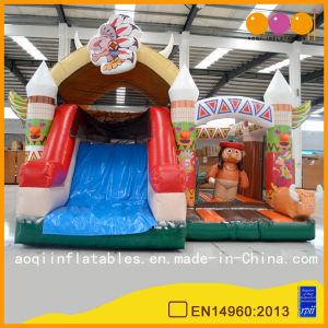 Kindergarden Big Indians Combo Fun City for Sale (AQ01587) pictures & photos