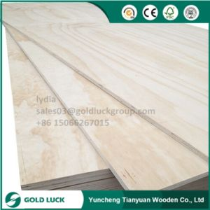 2mm - 25mm Okoume/Bintangor/Birch Furniture Frade Commercial Plywood pictures & photos