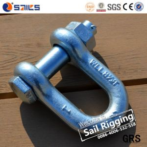 D Shackle with Forged Bolt and Nut Shackle pictures & photos