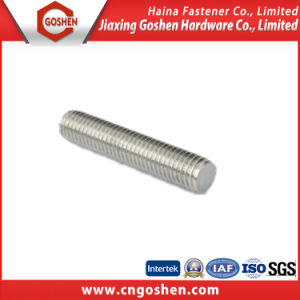 Ss304 Ss316, Ss304L, Ss316L Ect Stud Bolt / Threaded Rod pictures & photos