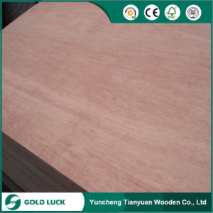 Cheapest 2.5-9mm Bintangor Packing Grade Plywood pictures & photos