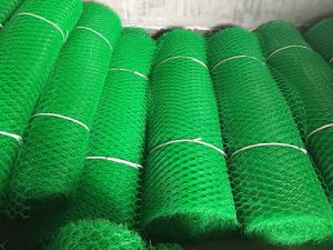 Color Can Be Customized for Our Plastic Mesh Product pictures & photos
