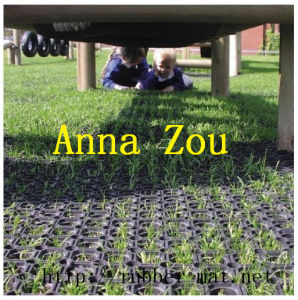 Used Grass Rubber Mats Rubber Hollow Mats pictures & photos