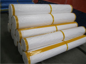 White Color Waterproof PE Tarpaulin pictures & photos