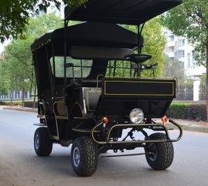 Tourist Horse Carriage with 4 Wheels Brake 6 Places (BTH-11D+6)