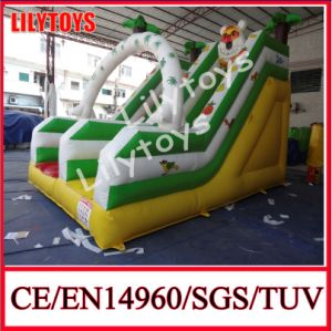 Lilytoys High Quality Inflatable Slide pictures & photos