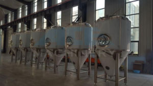 50L Microbrewery Equipment for Sale Beer Equipment (ACE-FJG-P9) pictures & photos