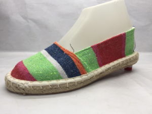 Fashion and All-Match Lady Shoes with Colorful Canvas Upper (23LG1717) pictures & photos