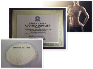 GMP Standard Fat Loss Sarm Ostarine Mk2866 for Muscle Increase Steroids Powder pictures & photos