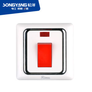 I Series Low Price PC Material White Color 45A Dp Switch pictures & photos