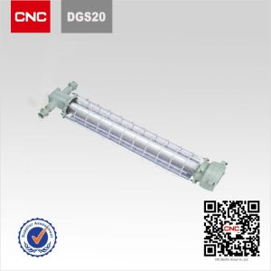 Dgs20 China Top 500 Enterprise Electric Supplier Mining Explosion Proof Fluorescent Lamp pictures & photos