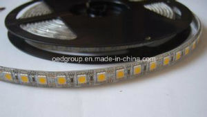 SMD5050 72 LEDs/M LED Flexible Stripe Light for Indoors Decoration pictures & photos