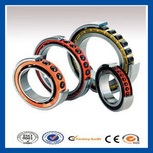 Shanghai High Quality P6 Precision Angular Contact Ball Bearing 3200A/3201A/3202A/3203A
