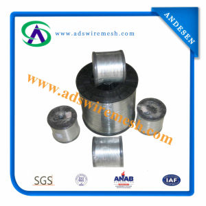 Stainless Steel 410 Wire for Cleaning Ball (ADS-SS-410) pictures & photos