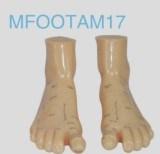 Massage Foot Acupuncture Model (17cm) pictures & photos