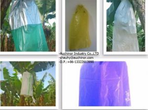 Insect Prevention Good Shape Increase Production Banana PP Cloth Sleeves pictures & photos