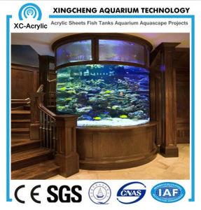 Customized Acrylic Aquarium for Ornamental pictures & photos
