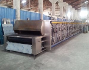 Gas Electric Diesel Tunnel Oven pictures & photos
