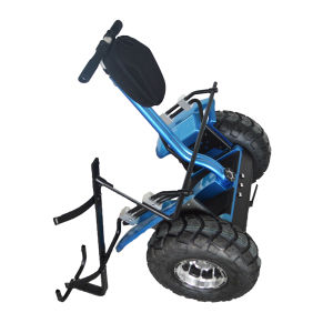 Fashionable Golf Scooter with CE for Adults pictures & photos