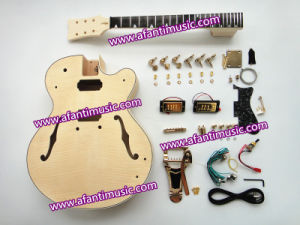 Afanti Hollow Body Flamed Mapel Top Electric Guitar Kit (AHB-536) pictures & photos